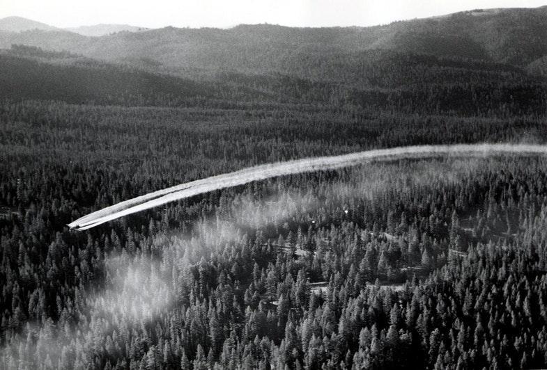 Распыление ДДТ с легкомоторного самолета. США, Орегон, 1955 год.
