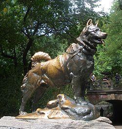 Памятник Балто в Центральном парке