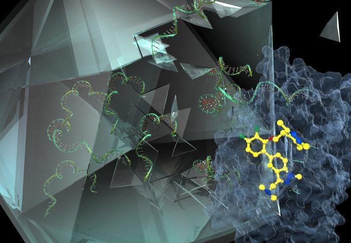 Молекула (желтая) блокирует белковые образования, мешая им образовать капсид вокруг цепочек вирусных РНК (зеленые)