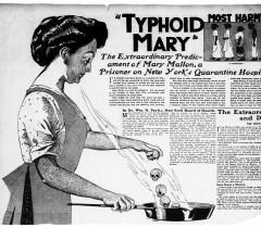 Тифозная Мэри. Иллюстрация. 1909 г.