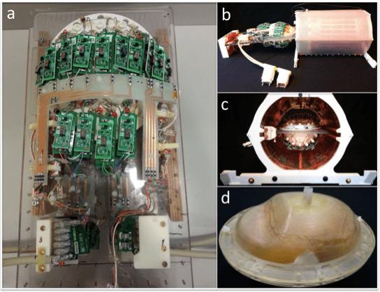Так выглядела катушка с кейсом для мозга и находящимся внутри органом. Credit: Andre van der Kouwe et al. 2019