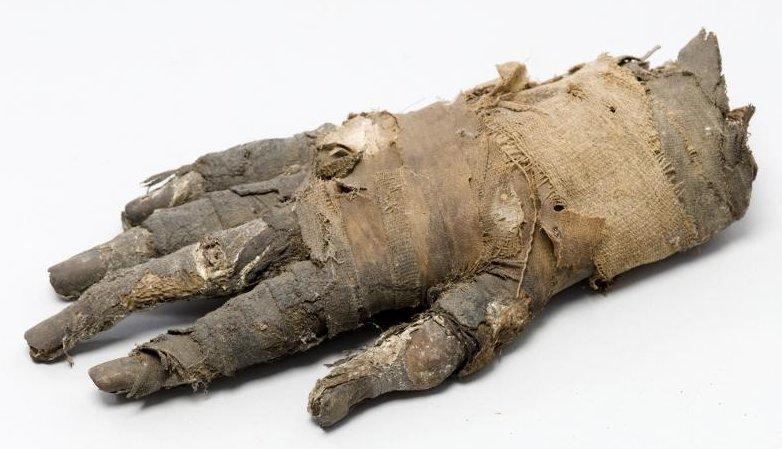Mummified hand of an Egyptian man from 400 B.C. Image courtesy of Jenny Romell from KTH Royal Institute of Technology.